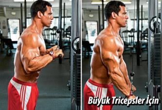 Büyük Tricepsler Sert Kollar
