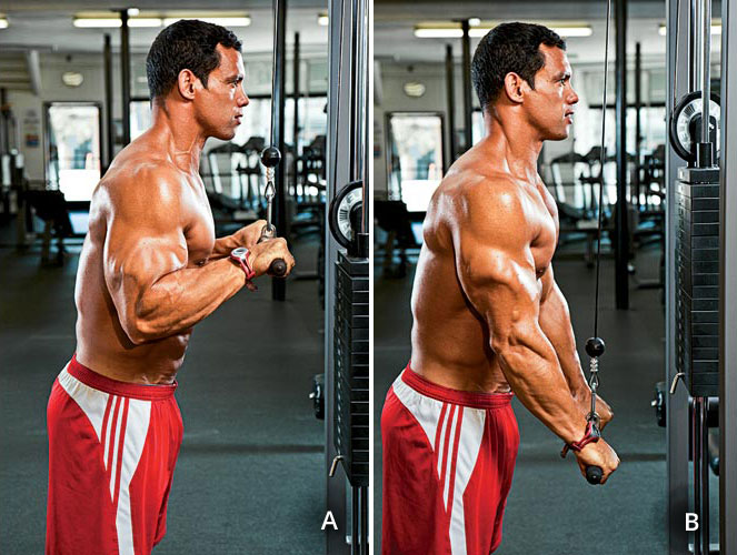 triceps-pushdown_two