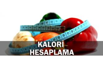 Sadece Kalori Hesabı Yaparak Kilo Vermek Doğru Mu ?