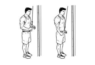 Triceps Antrenmanını Cable'la Deneyin