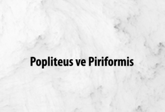 Popliteus ve Piriformis