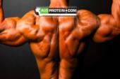 Protein Tozu Kullanmadan Vücut Geliştirme Yapabilir Miyim ?