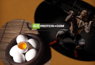 Protein Almak Zararlı Mı?