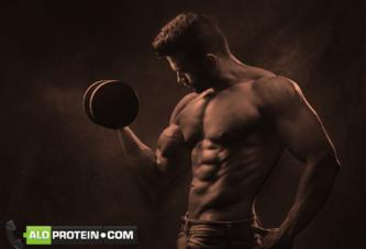 Protein Tozu Etkisini Ne Zaman Gösterir? Nasıl Kullanmalıyım?