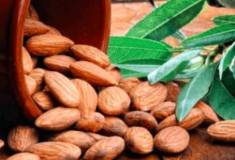 Vitamin B17 (Laetril veya Kayısı Tohumları) Kanserle Mücadelede Etkili mi?